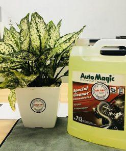 Dung dịch vệ sinh khoang máy ô tô Special Cleaner Auto Magic
